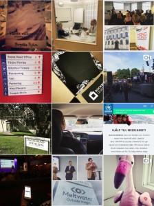 Instagram plyhmpr