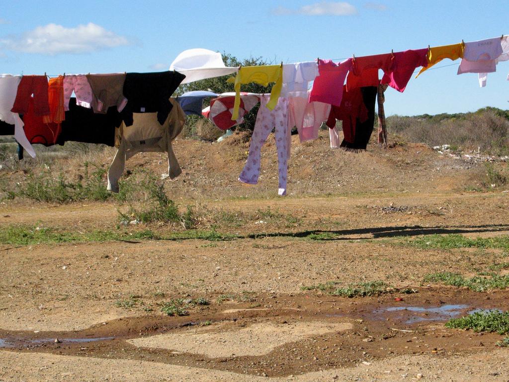Tvättlina