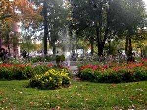 Drömmen om en park